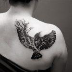 vrana-cerna